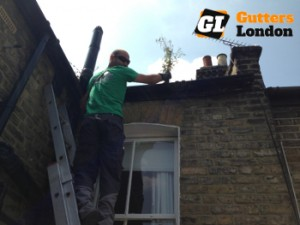 Gutter lining in London