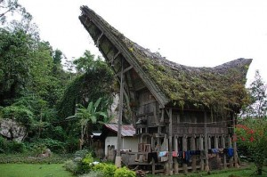 TraditionalTorajan House